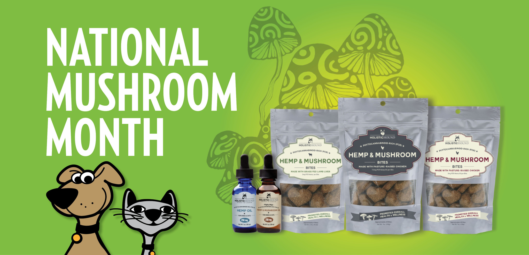 Benefits Of Mushrooms For Cats & Dogs