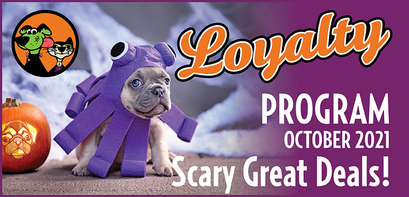 October's Spooktacular Savings for Cats and Dogs