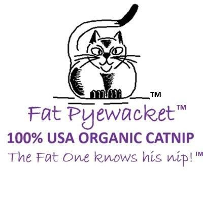 Meet Tammy Gach, Fat Pyewacket Founder