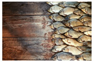 The Benefit Of Fish Stock