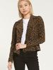 Z Supply Z Supply Charley Leopard Jacquard Jacket