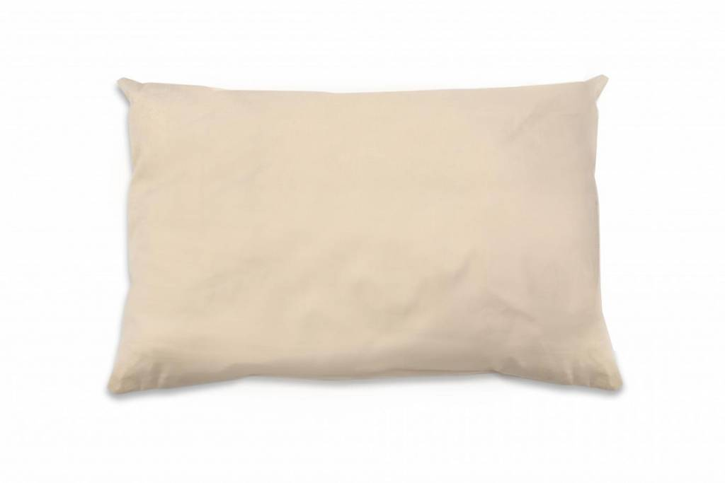 Naturepedic Organic Cotton Toddler Pillow