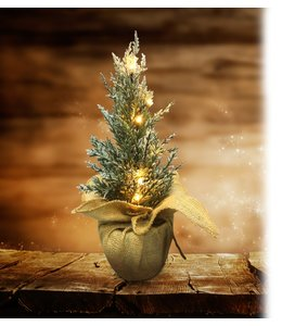 "LAUREN TAYLOR LED PINE TREE w/SNOW 16"" (MP6)"