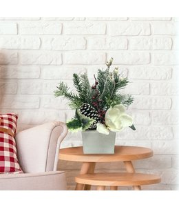 """CHRISTMAS FLORAL IN WOODEN WHITE BOX 13"""" (MP8)"""