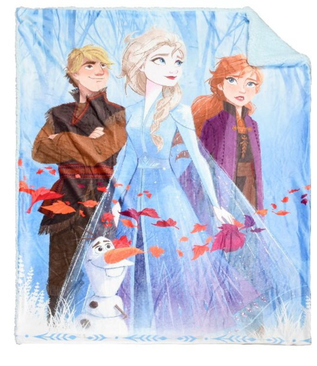 2PLY LICENSED PHOTOREAL THROW FROZEN 2 (MP4) 40X50""