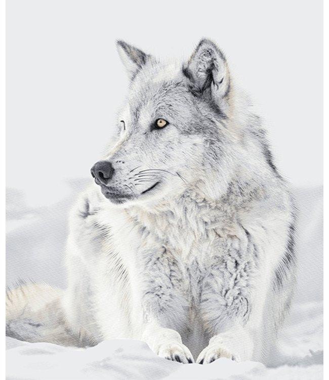 "LAUREN TAYLOR MICRO MINK THROW 50X60"" (MP3) SITTING WOLF"