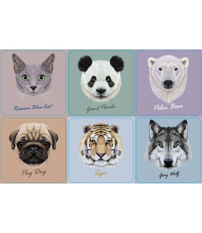 ADRIEN LEWIS SET OF 4 COASTERS ANIMAL AST (MP24)