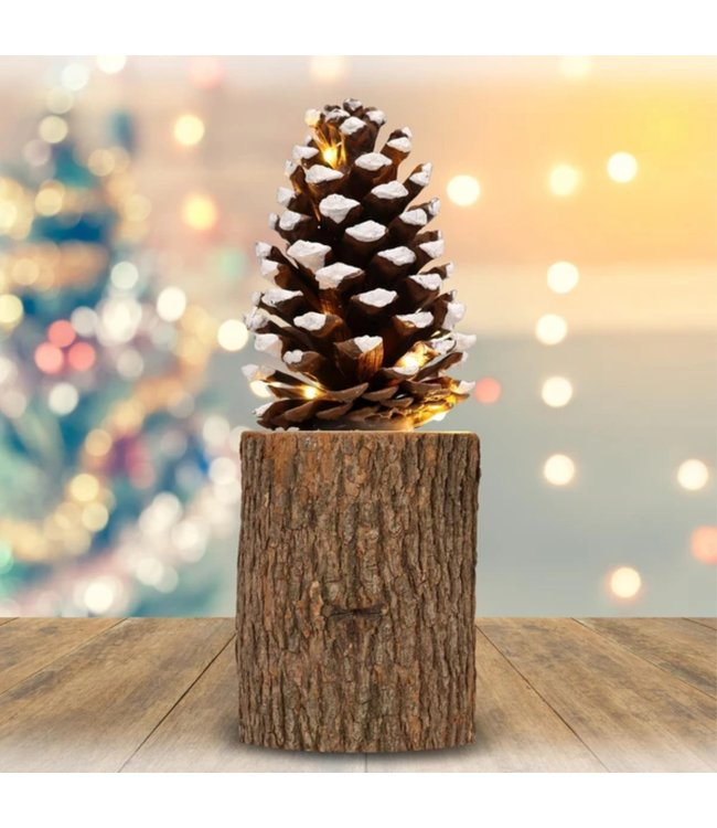 """HOLIDAY PINECONE SITTING ON TIMBER WOOD 10"""" (MP6)"""