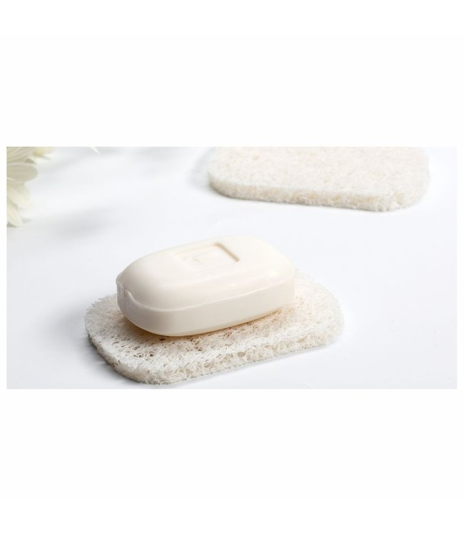 2pk SOAP SAVER SOAP HOLDER (MP48)