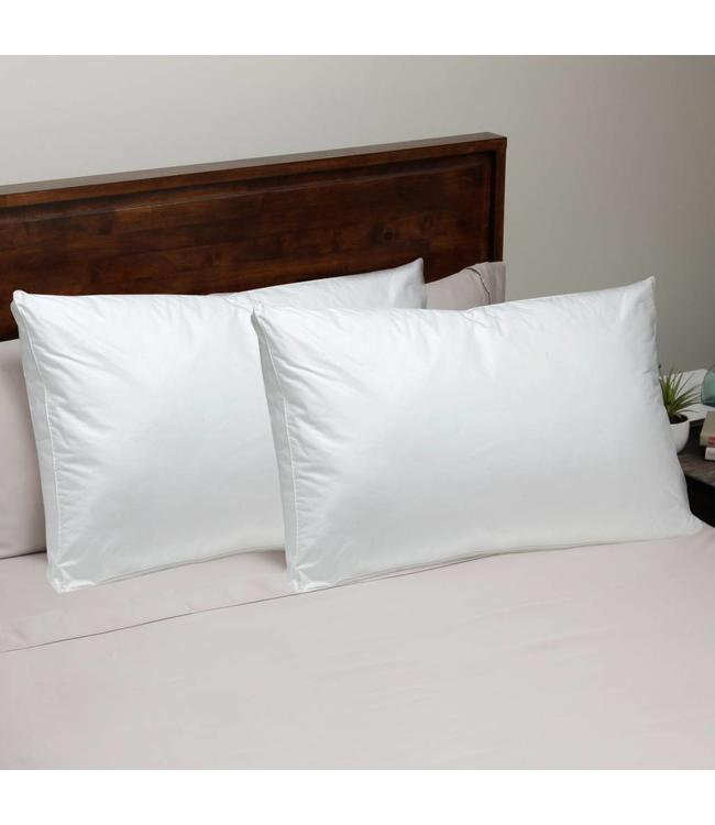 LAUREN TAYLOR TWIN PACK WHITE DUCK FEATHER/DOWN PILLOW STANDARD (MP6)