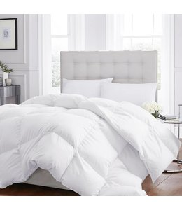 W HOME LEVEL 1 - EUROPEAN DOWN DUVET (MP3)