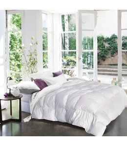 STUDIO 707 MICRO FIBRE DUVET (MP3)
