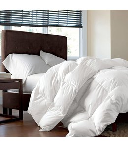 STUDIO 707 MICRO FIBRE EXTRA FILL DUVET (MP3)
