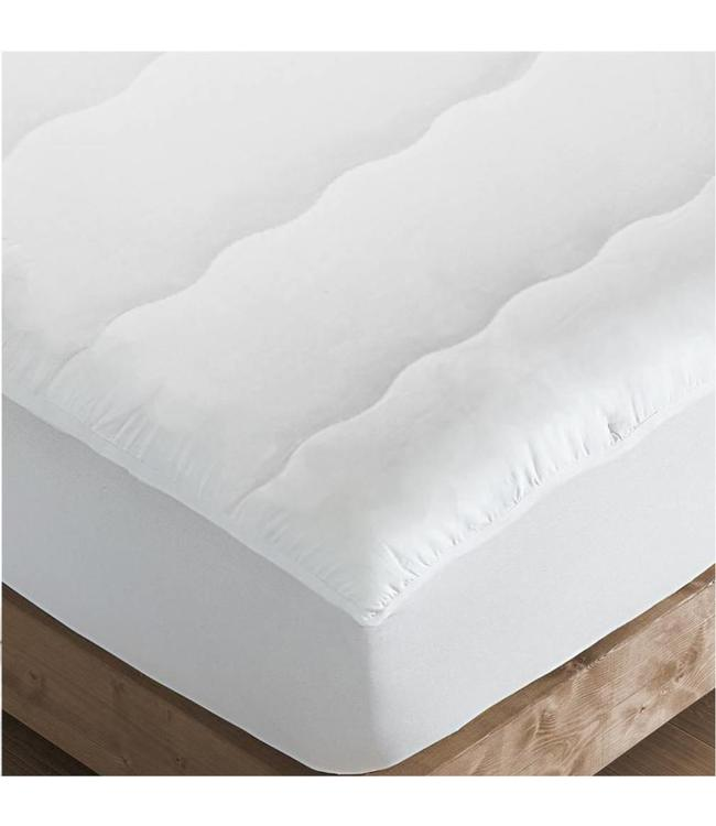 LAUREN TAYLOR ANTIBAC-PLUS MATTRESS PROTECTOR (MP6)