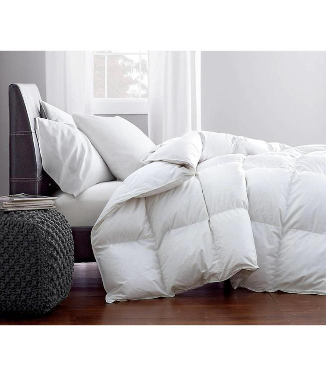 LAUREN TAYLOR GOOSE FEATHER FILLED PILLOW (MP12)