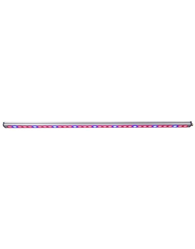 AgroLED AgroLED 108 Dio-Watt Veg Supplemental Rail 120 - 240 Volt 120 degree Optics