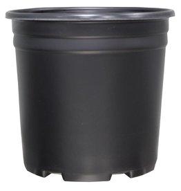 sunlight garden supply Thermoformed Nursery Pot 2 Gallon