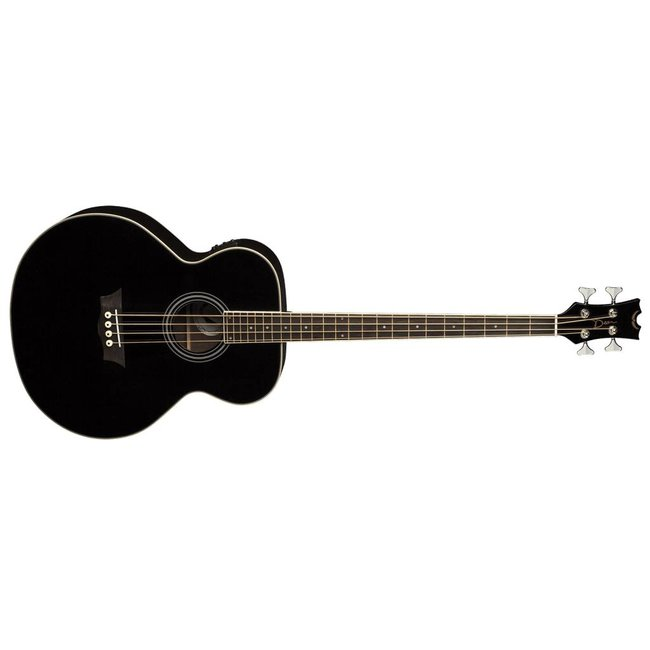 Acoustic/Electric Bass Fretless CBK