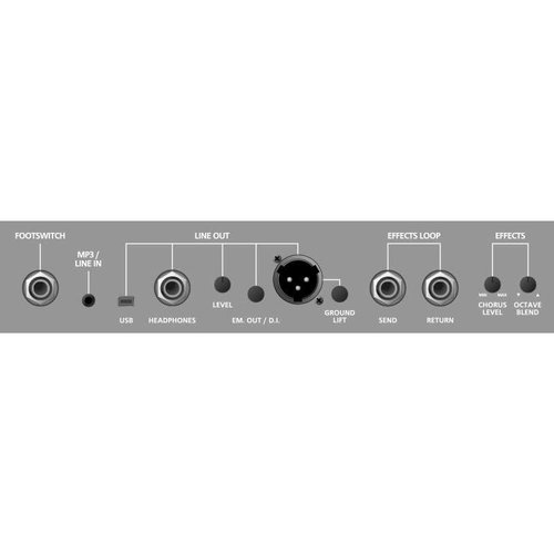 Blackstar Blackstar BASSU250 Unity Series 250W Bass Amp