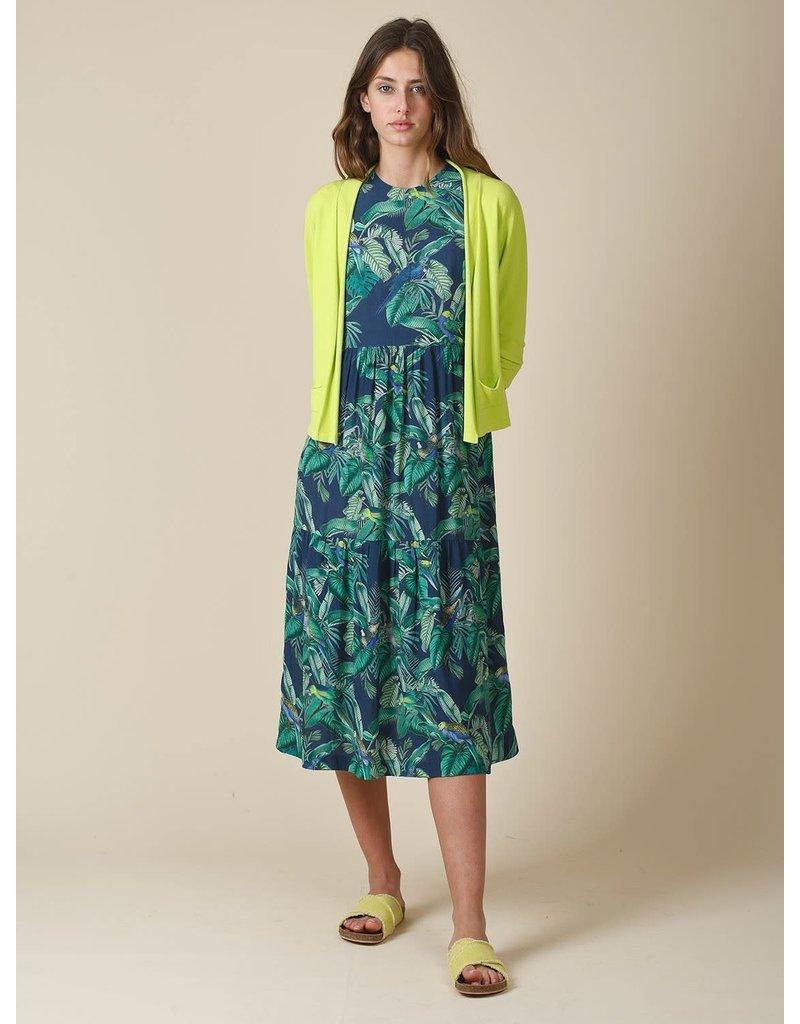 Indi & Cold Maxi Dress Green Print
