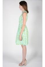 Birds of North America Oceanite Sleeveless Dress Green