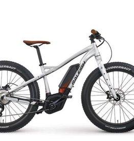 Raleigh Vélo électrique Raleigh Magnus iE eMTB 2019 Argent