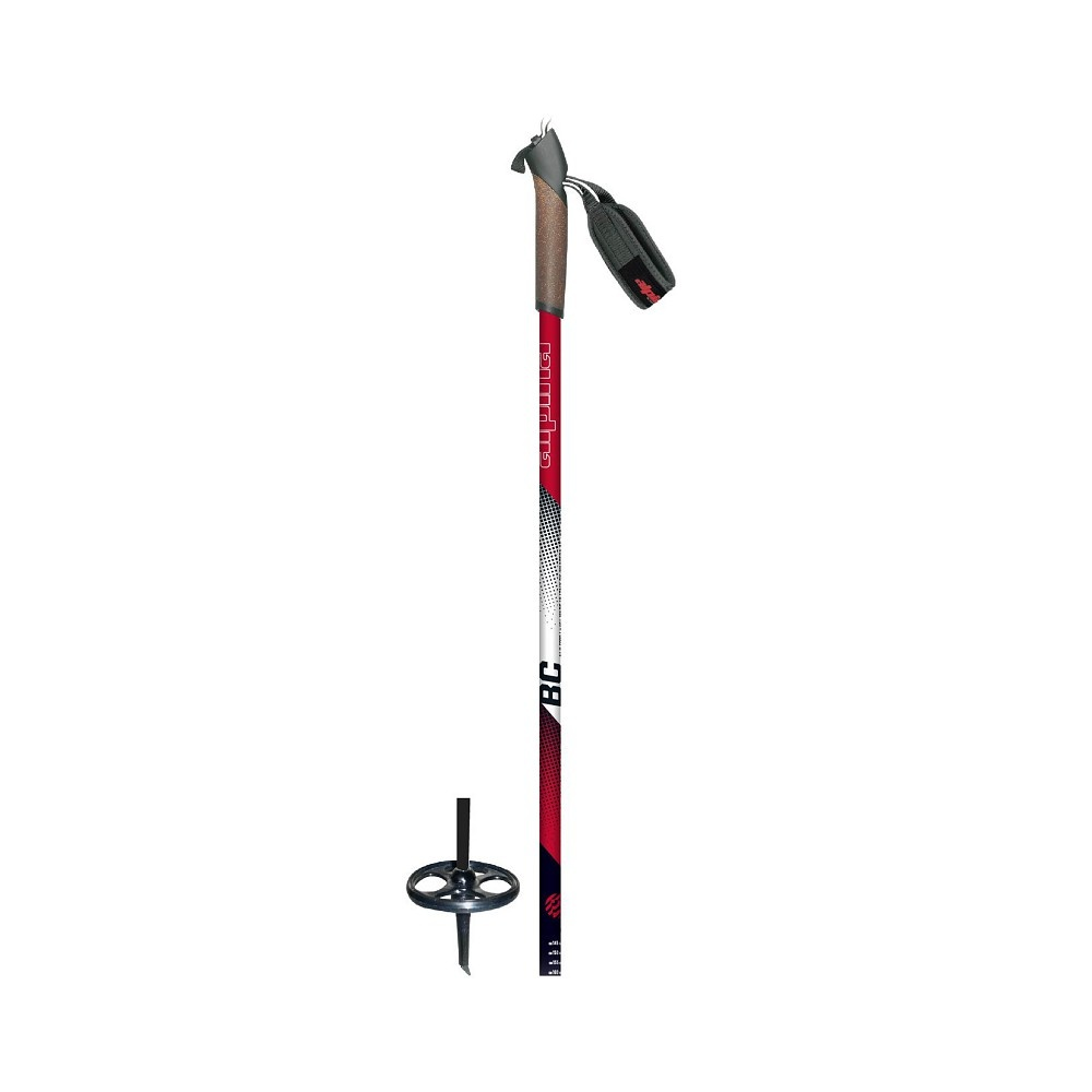 Alpina BC Pole 2019