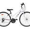 DCO Elegance 702 Bike 2020
