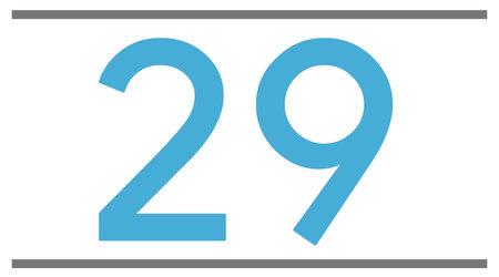 29 pouces