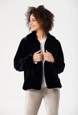 Brave N True Steinway Jacket