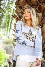 3rd Story Leopard star x6 sweater