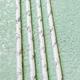 Chez Gagne Congrats Paper Straws
