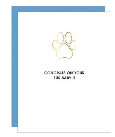 Chez Gagne Congrats Fur-Baby Paper Clip Card