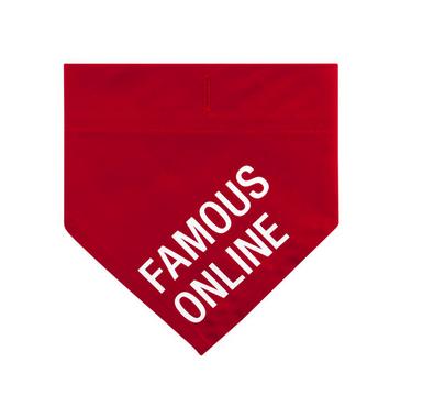 About Face Designs Famous Online S/M Bandana