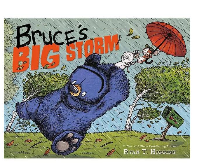 Hachette Bruce's Big Storm