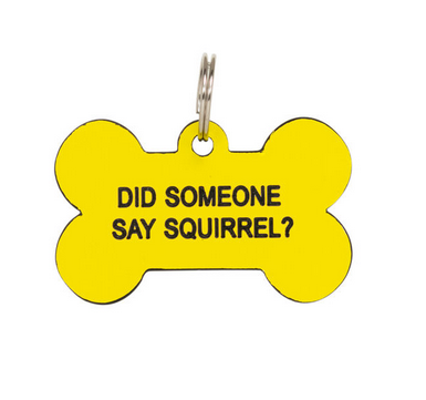 About Face Designs Dog Tag - Did Somone Say Squirrel