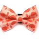 Winthrope Clothing Co Dog Bow Tie Crab Large