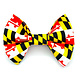 Banjo's Bows MD Flag Bow Tie