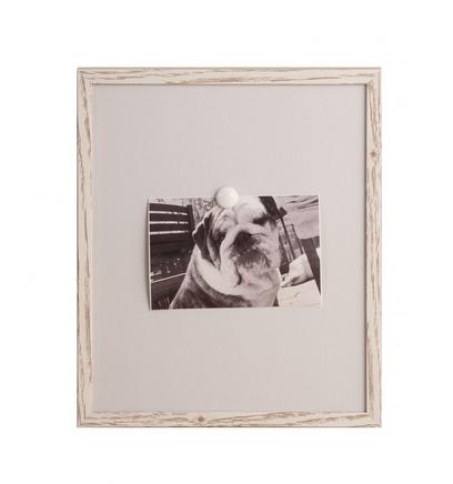 Ever Ellis Gray Magnet Frame - Blank