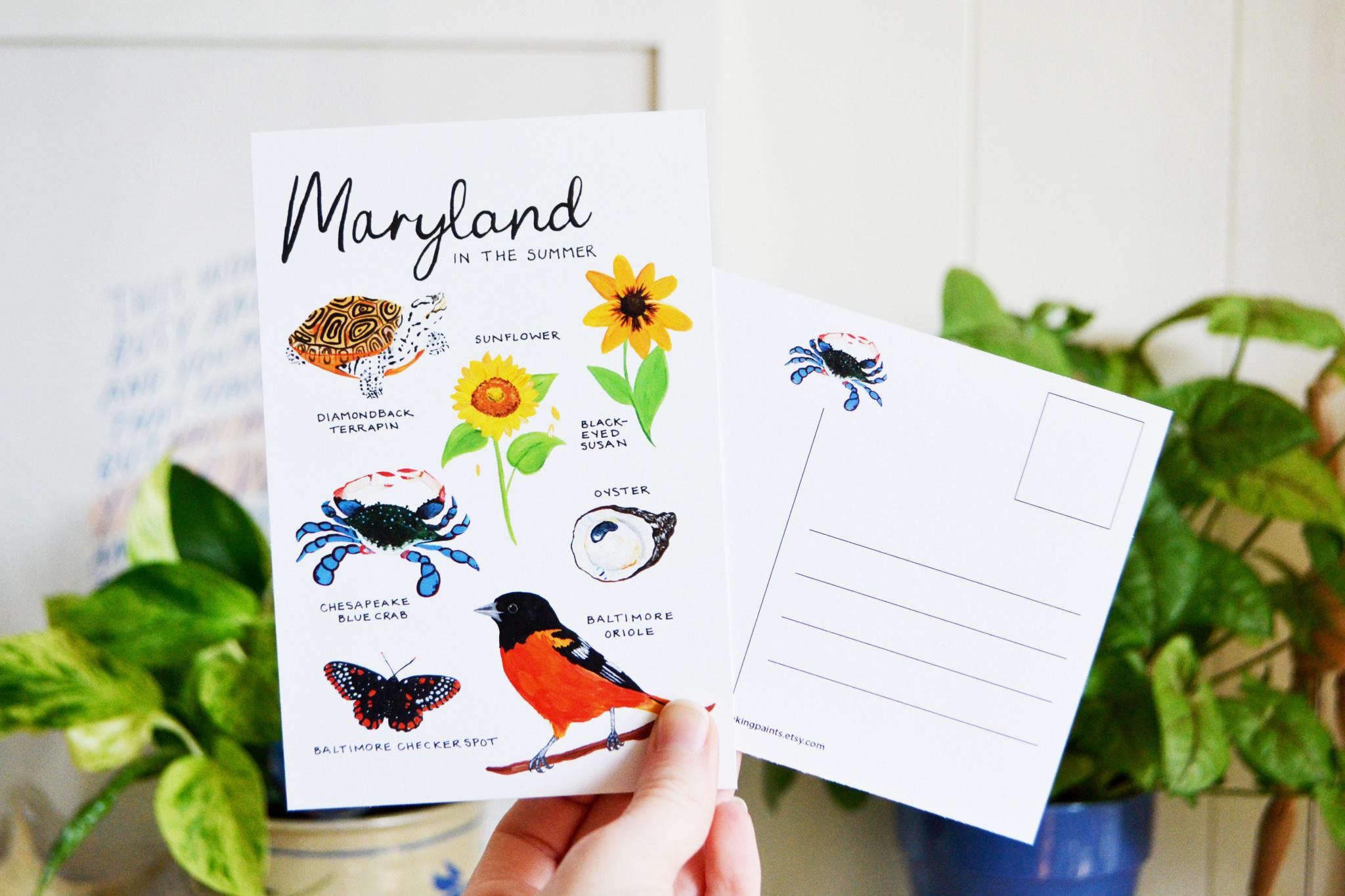 Laura King Paints Maryland Postcard