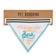 Creative Brands It's My Birthday Pet Bandana
