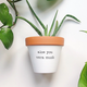 Rally & Roots Aloe You Vera Much Planter