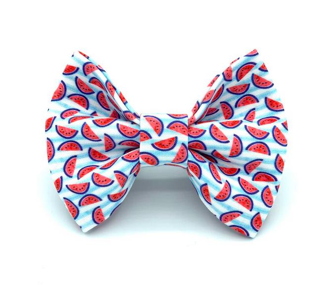 Banjo's Bows Mini Watermelon Dog Bow Tie