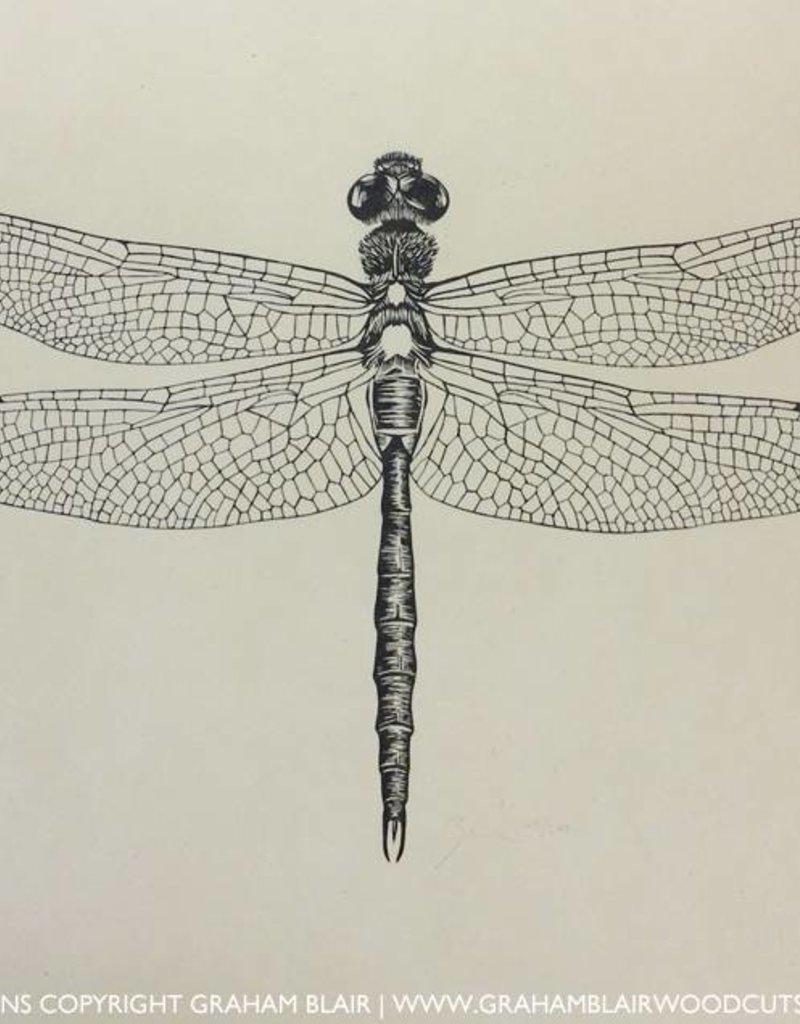 Graham Blair Woodcuts GRAHAM BLAIR dragonfly