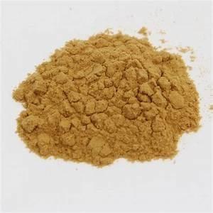 Lion's Mane 1:1 Extract Powder Bulk