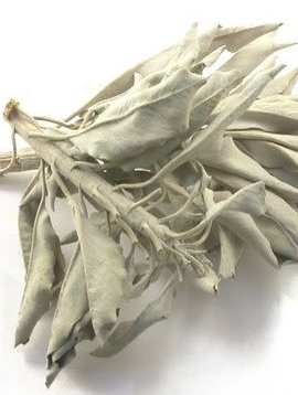 Sage, Calif. White Leaf Whole & Pieces Bulk