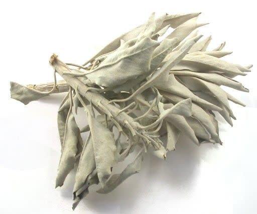 Sage, Calif. White Leaf Whole & Pieces Bulk