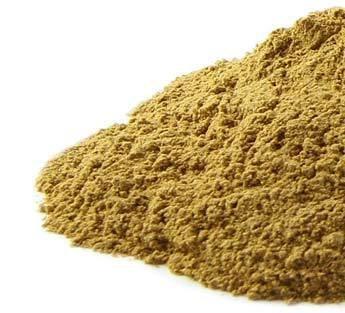 Yellow Dock Root Powder Bulk