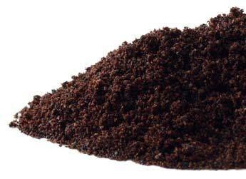 Elderberries powder 4 oz