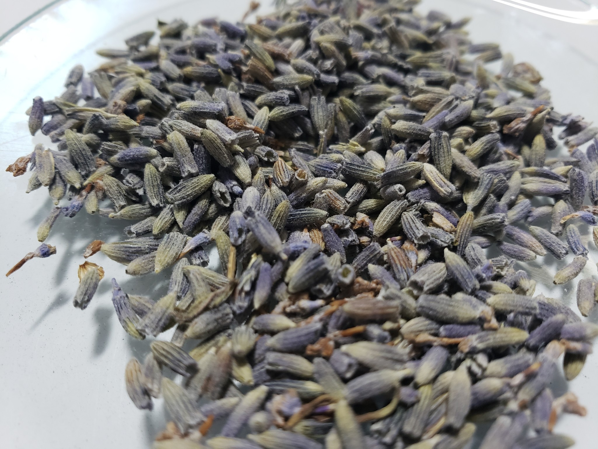 Lavender Flower Cut and Sifted Bulk